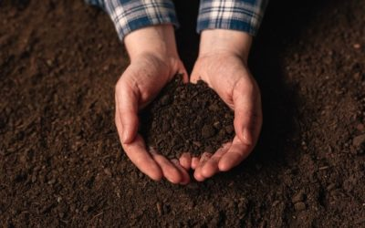 Soil Corrosion…Is The Soil Destroying Your Underground Structures?